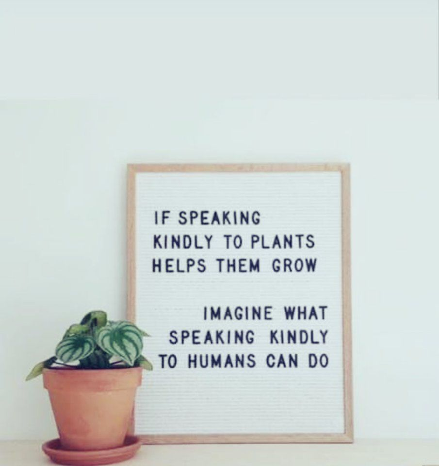 Miss Kitty Op Twitter If Speaking Kindly To Plants Helps Them Grow Imagine How Speaking Kindly To Humans Can Humanity Quotes Magical Quotes Kindness Quotes