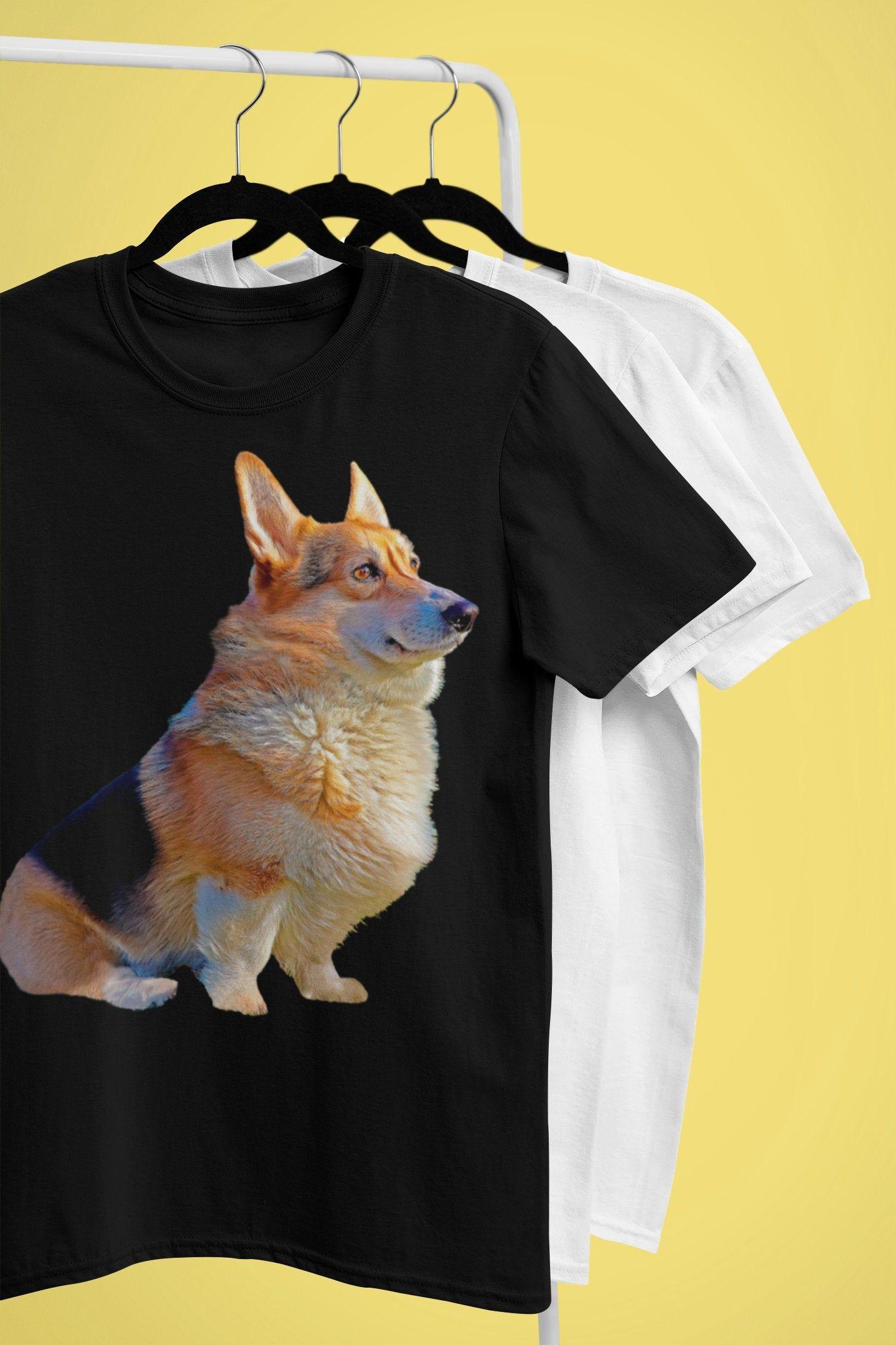 Cardigan Welsh Corgi Puppies For Sale In Nj Ideas