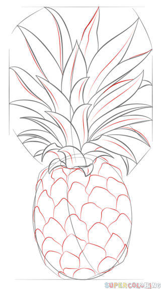How to draw a pineapple step by step drawing tutorials - Ananas dessin ...