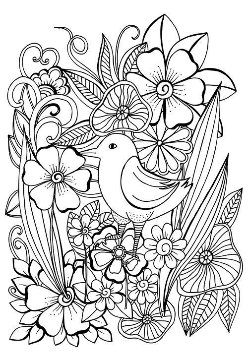 Цветы 380 фотографий ВКонтакте Coloring Fairies