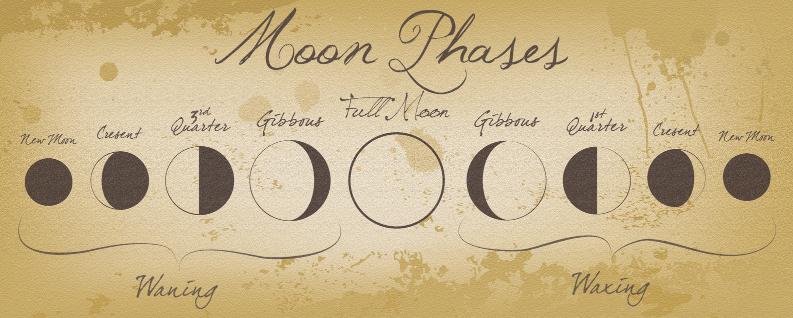 #Moon Cycles.