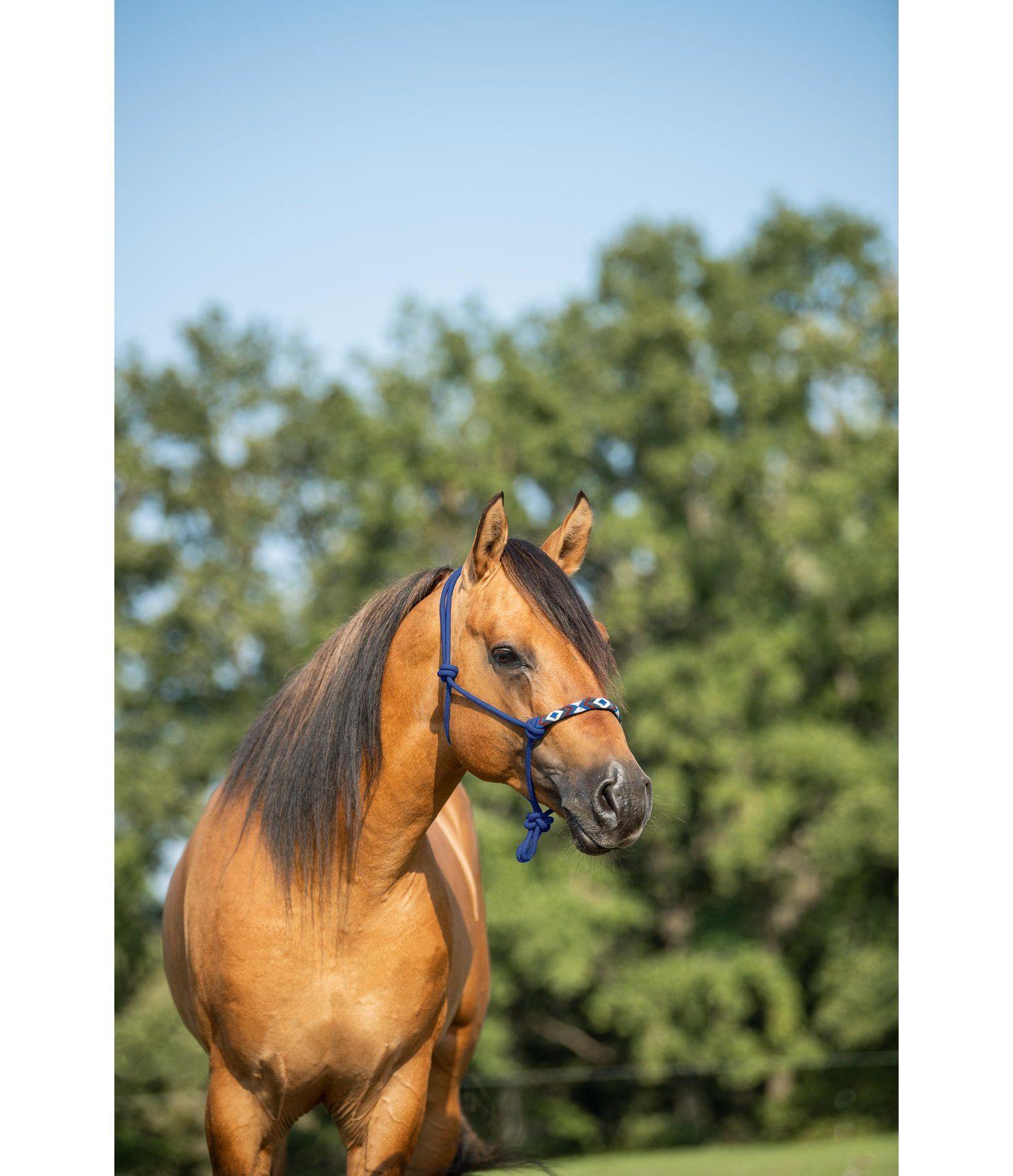 Knotenhalfter Beaded Knotenhalfter Pferde Western Halfter