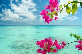 Little haiti beach