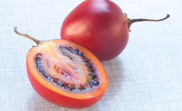 Frutoterapia para adelgazar tomate de arbol propiedades