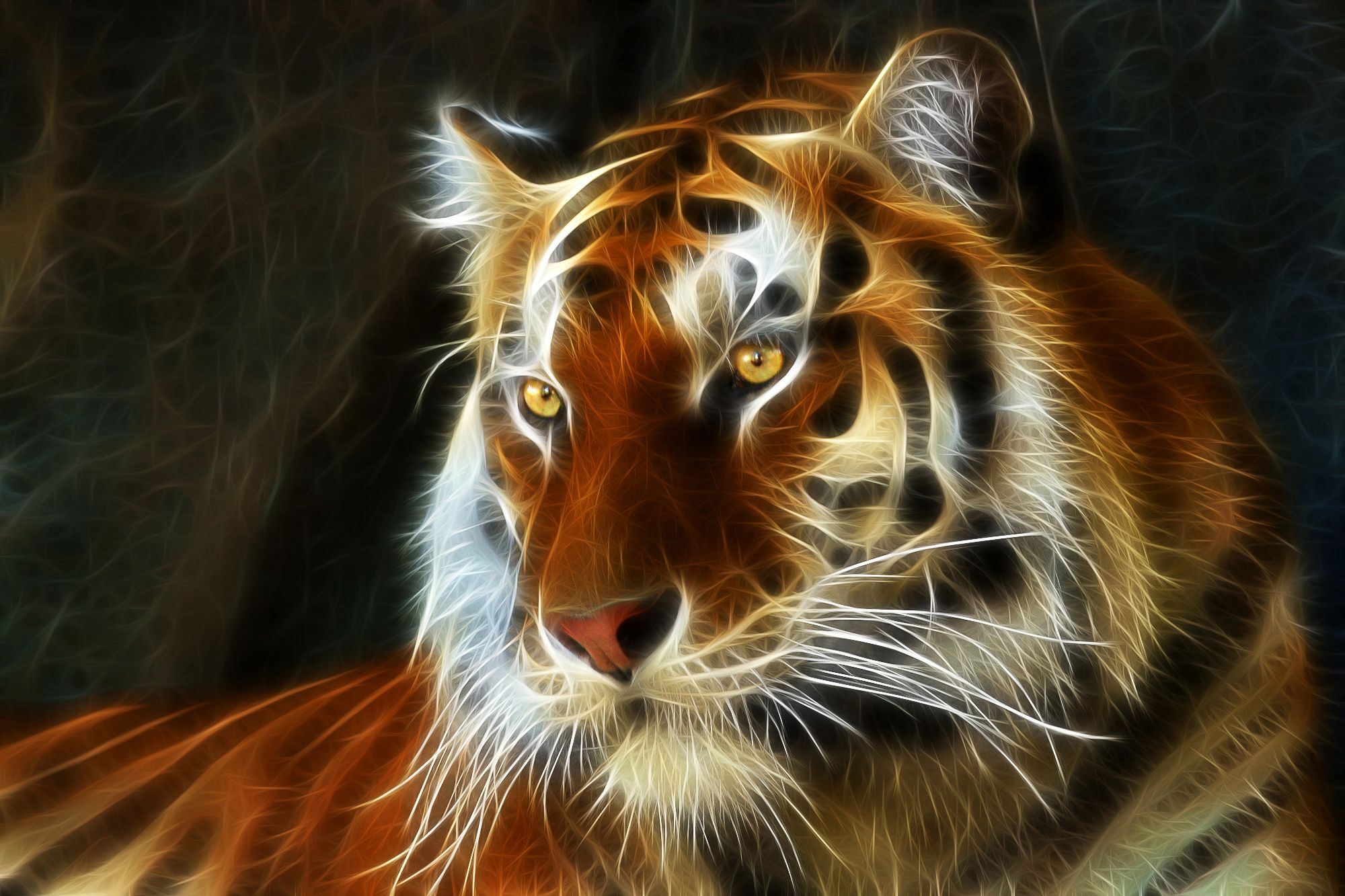 Tiger images 3d animals wallpapers tiger wallpaper - 3d animal wallpaper ...