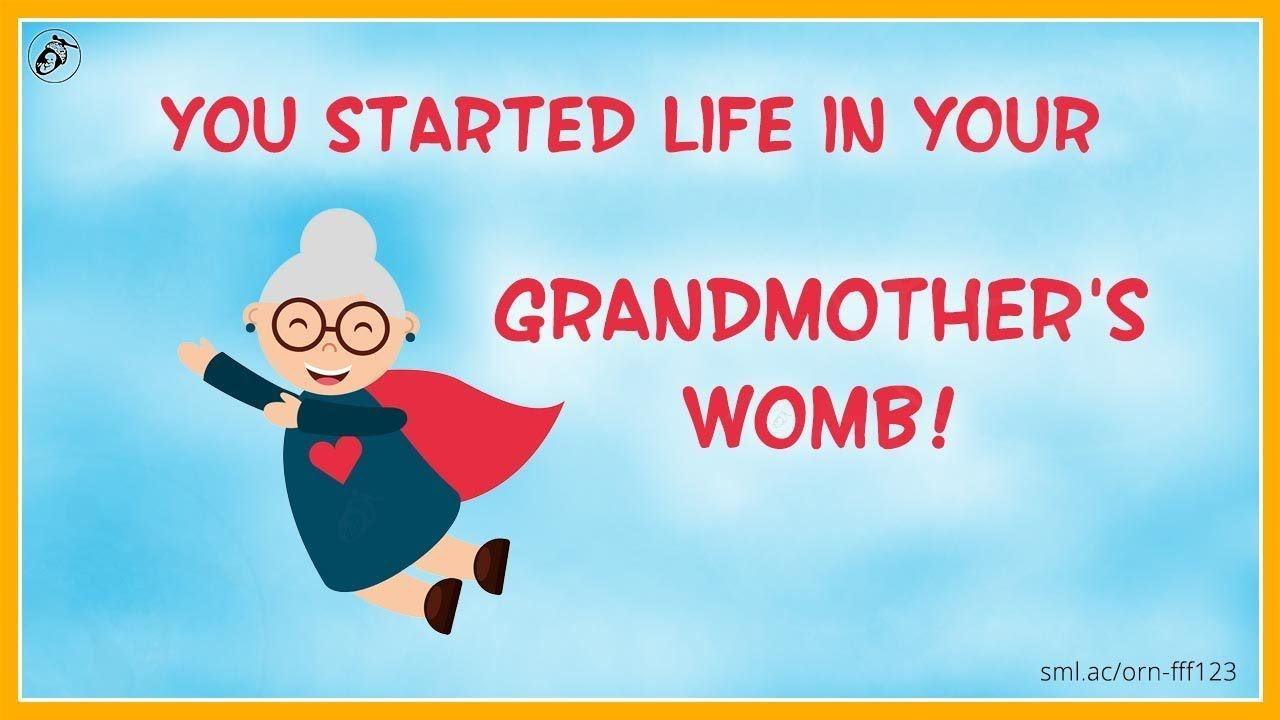 You Didn T Start Life In Your Mother S Womb Fff 123 Fun Fact