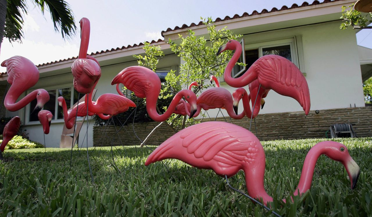 Pink Flamingos Lawn Ornaments Things You Didn T Know About Plastic