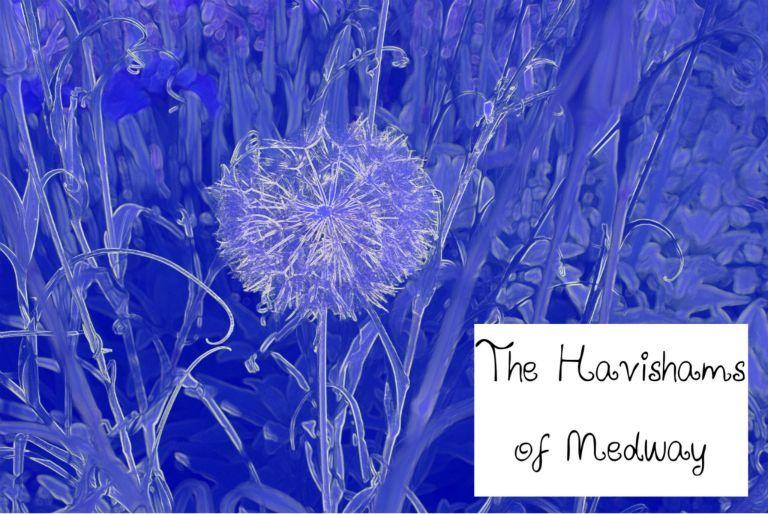 The Havishams, my sister's blog