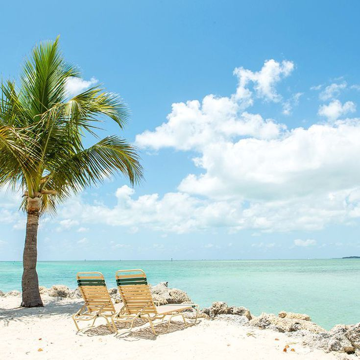 5 All-Inclusive Resorts In Florida You Should Experience