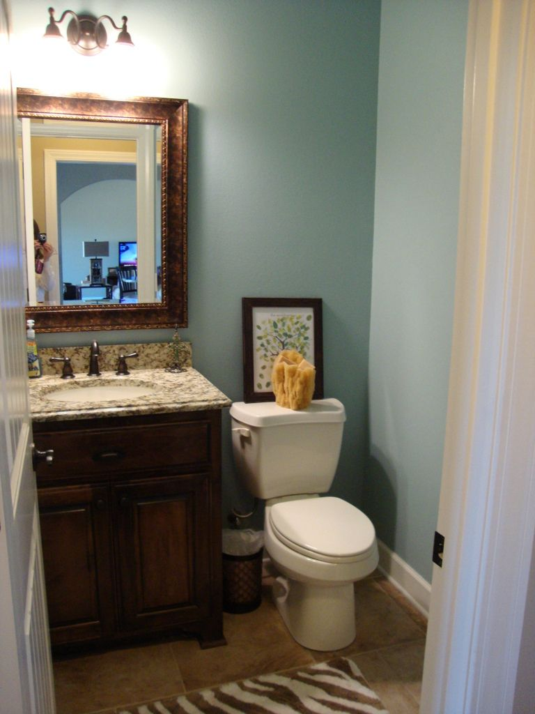 Love this paint color sherwin williams rain decorating for Bathroom ideas 5x5