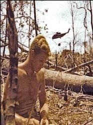 Honoring #USArmy Cpl Michael L Paddock, died 3/15/1969 in South Vietnam. Honor him so he is not forgotten.  DEBRA GIFFORD (@lovemyyorkie14) | Twitter