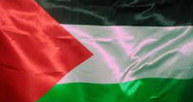 صور علم فلسطين رمزيات وخلفيات العلم الفلسطيني ميكساتك Paper Shopping Bag Photo Silence