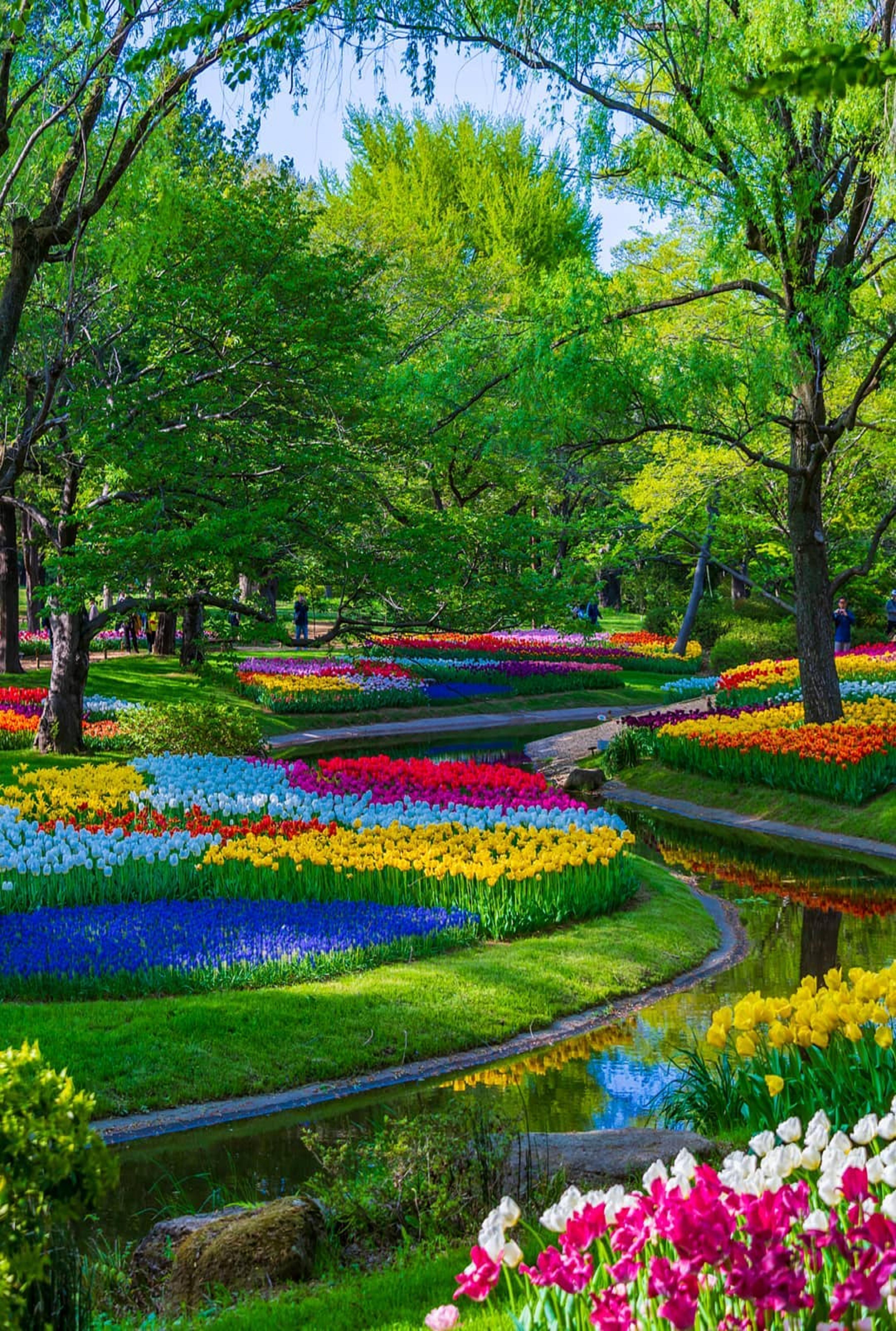 Pin By Ivanka Kostova On Vsichko Beautiful Gardens Most Beautiful Gardens Beautiful Nature Wallpaper