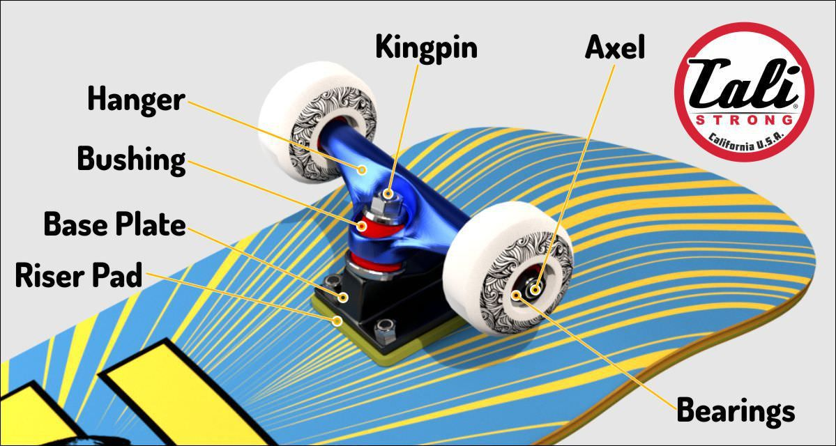 cali strong basic skateboard buying guide pinterest skateboard rh pinterest com Skateboard Diagram Labeled Parts to Make a Skateboard