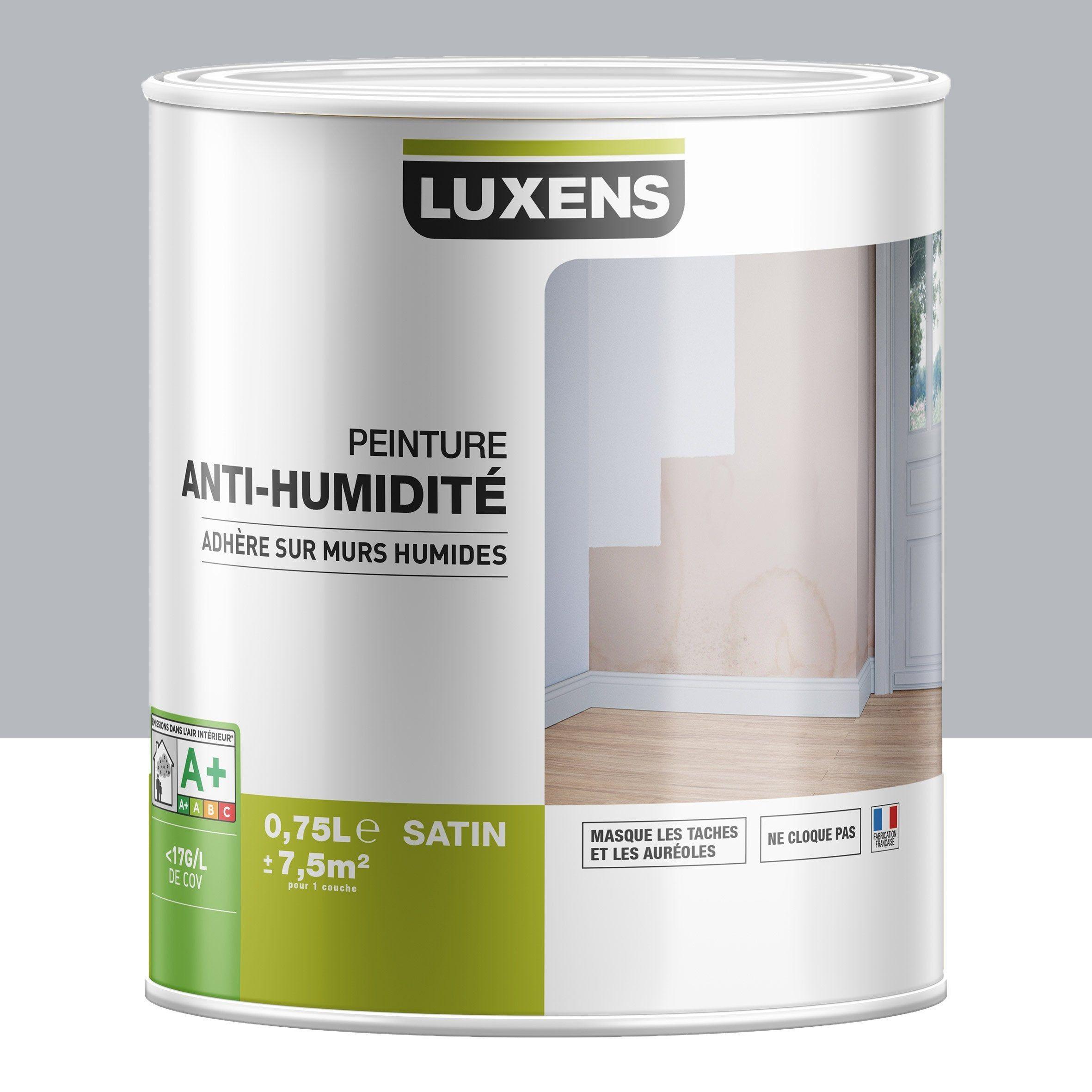 Peinture Antihumidite Luxens Gris 2 Peinture Gris Et Ivoire