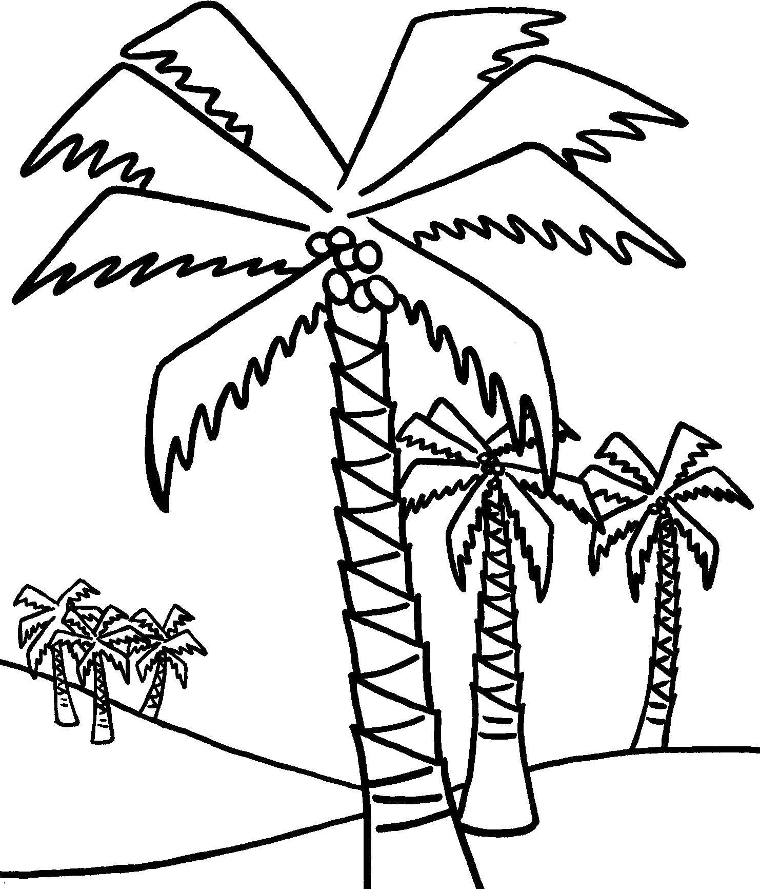palmera | Madera | Pinterest