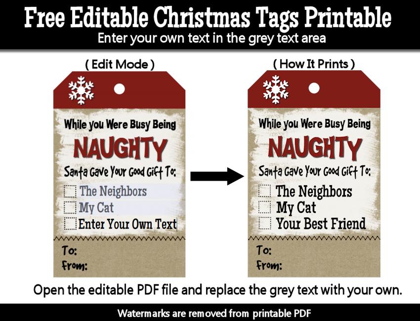 Naughty christmas tags printable free printables pinterest funny naughty christmas gift tags printable pdf digital kraft tags xmas humor commercial use ok negle Choice Image