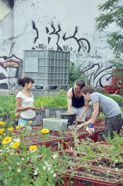 Landscape Gardening Courses Hampshire. Landscape Gardening ...
