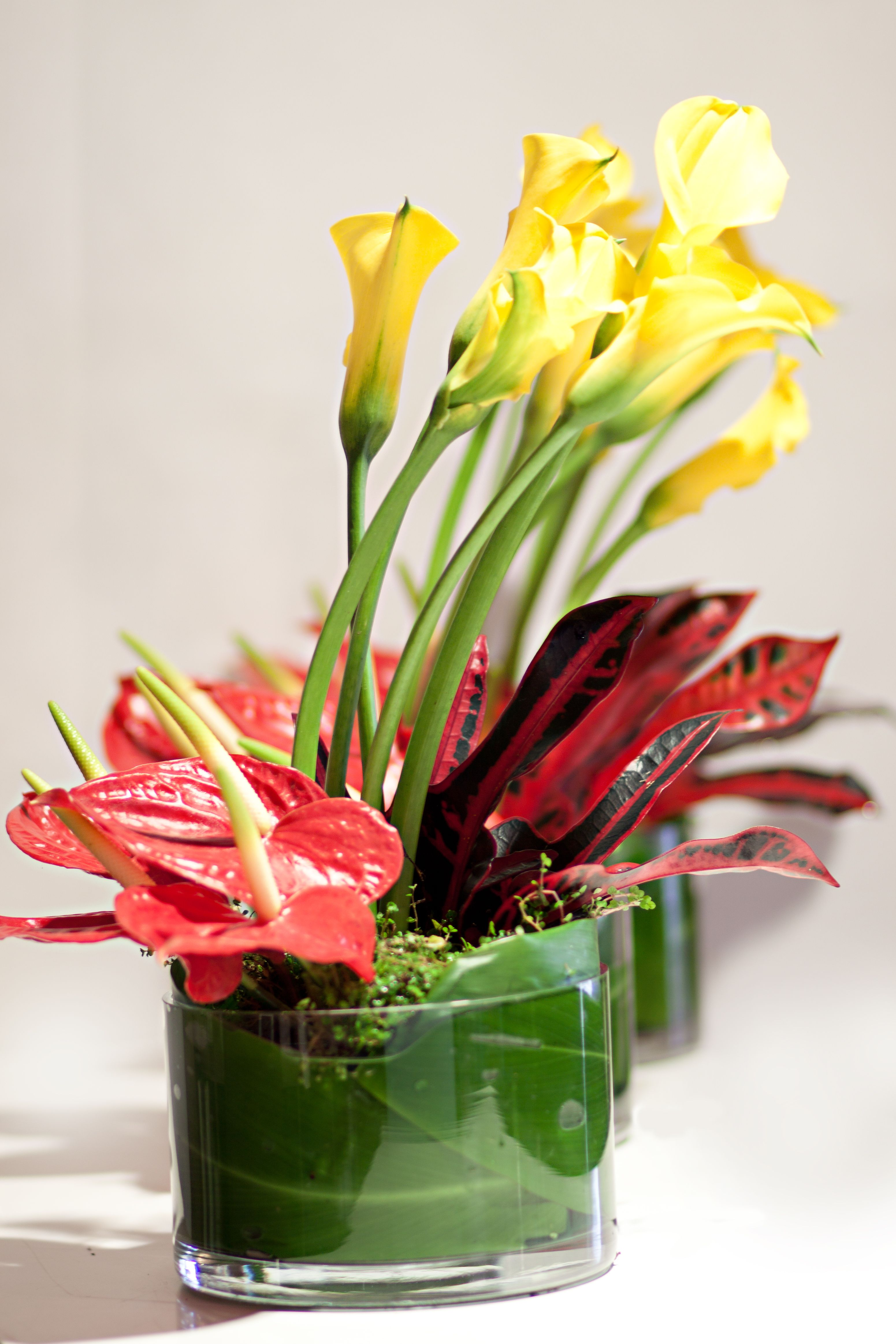 Corporate Flowers Combination Of Anthurium With Yellow Calla Colourfull Leaves Con Imagenes Arreglos Florales Floral Flores