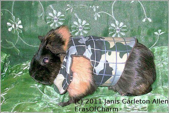 Pin On Animals Wearing Clothing