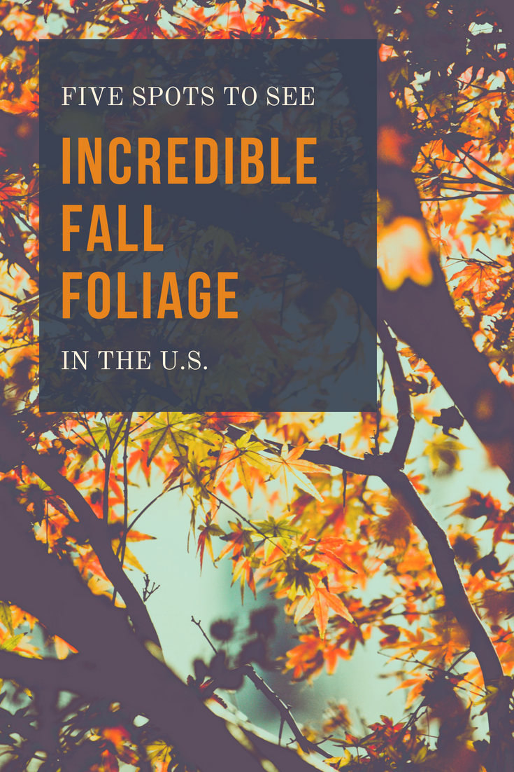 Five Of The Best Spots In The U.S. To See Incredible Fall Foliage!  Brilliant Leaves