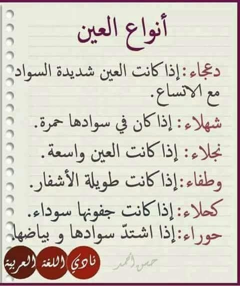 تعرف على معنى اسماء و انواع العيون و لماذا Language Quotes Beautiful Arabic Words Quotes For Book Lovers
