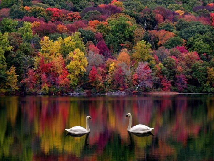 Amazing Natural Beauty Beautiful Nature Beautiful Landscapes Scenery
