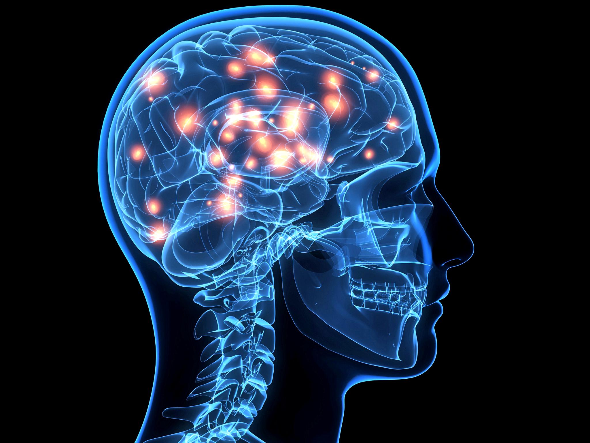¿Que es el neuromarketing? ¿Qué no es el neuromarketing? ¿Nos están dando gato por liebre? Conoce qué es esta técnica y distínguela de lo que no es.
