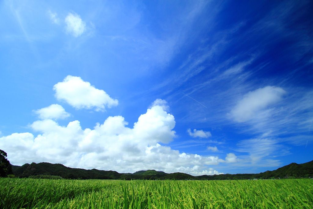 空 風 パターン | フリー写真] 田んぼと青空の ... | 風景, 美しい場所, 青空