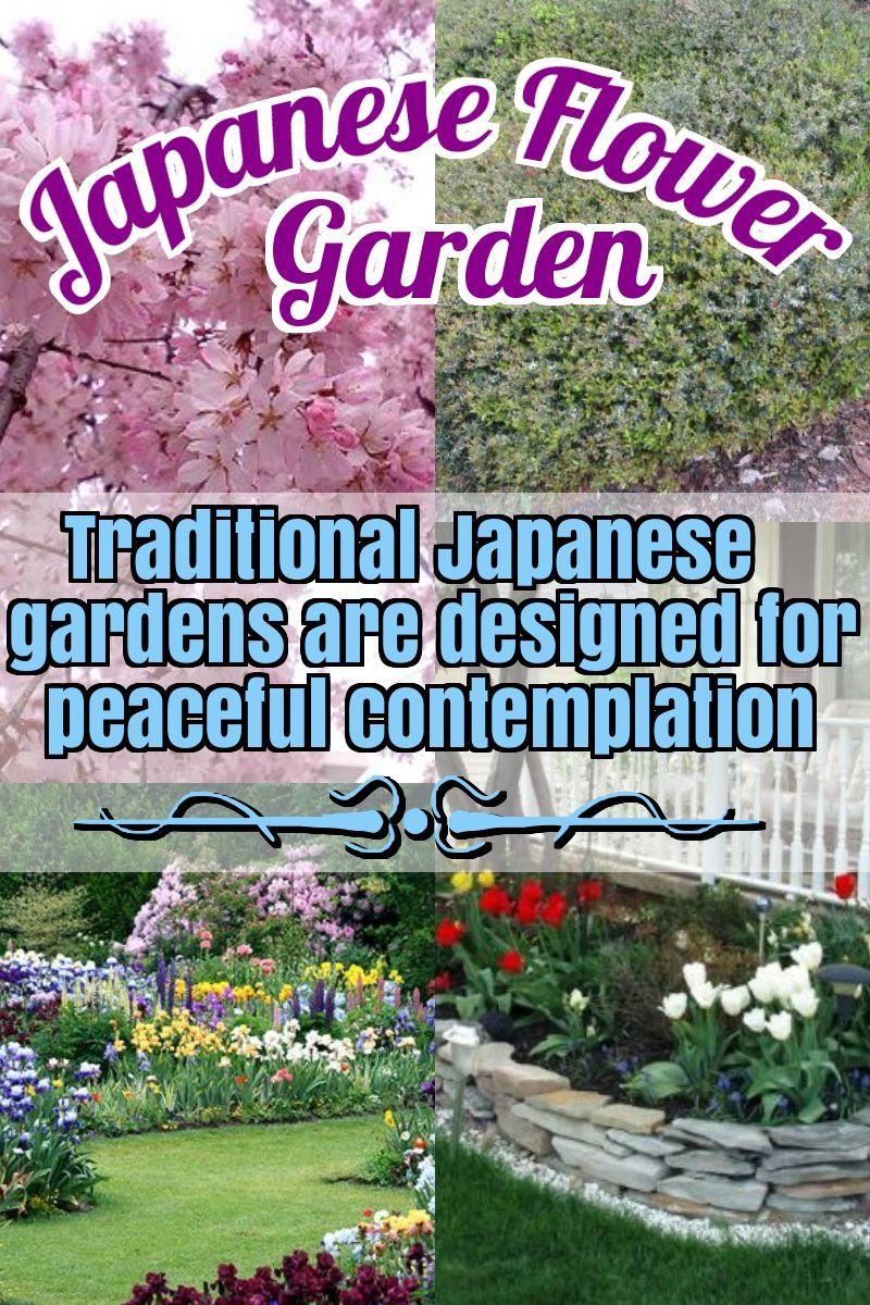 Seeking Advice About Gardening Look At This Piece Backyard