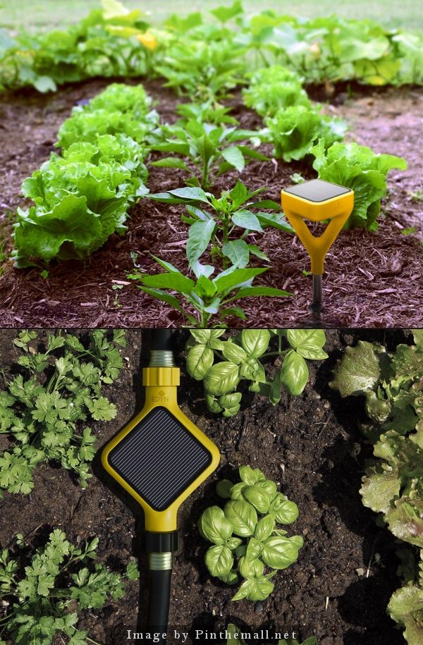 By Connecting Your Garden To Your Smartphone And Offering Real Time  Information, The Modern Garden Gadget Encourages And Reminds You To Take  Good ...