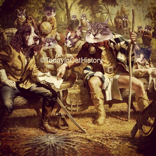 "@todayincathistory's photo: ""After 30 years of fighting, Apache leader Geronimo Cat surrenders to purebred General Nelson Miles in Arizona. Featuring the elegant @frassethecat as Geronimo Cat and his warriors - and the adorable @phoebe_loves_tuna as the young cat bottom right. Today in cat history, September 4, 1886! Geronimo Cat fought both Mexico and the United States for decades against their expansion into Apache tribal lands. #cat"