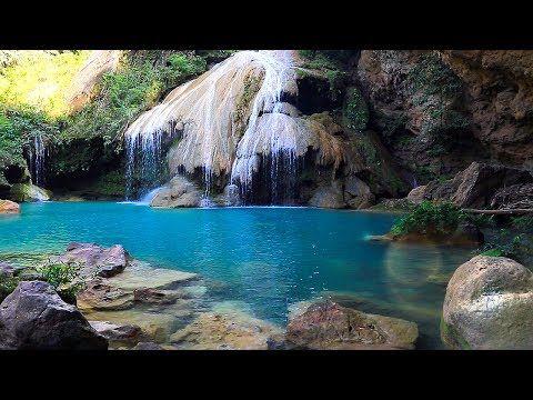 Rainforest Sounds - Waterfall Relaxing Music Singing Birds