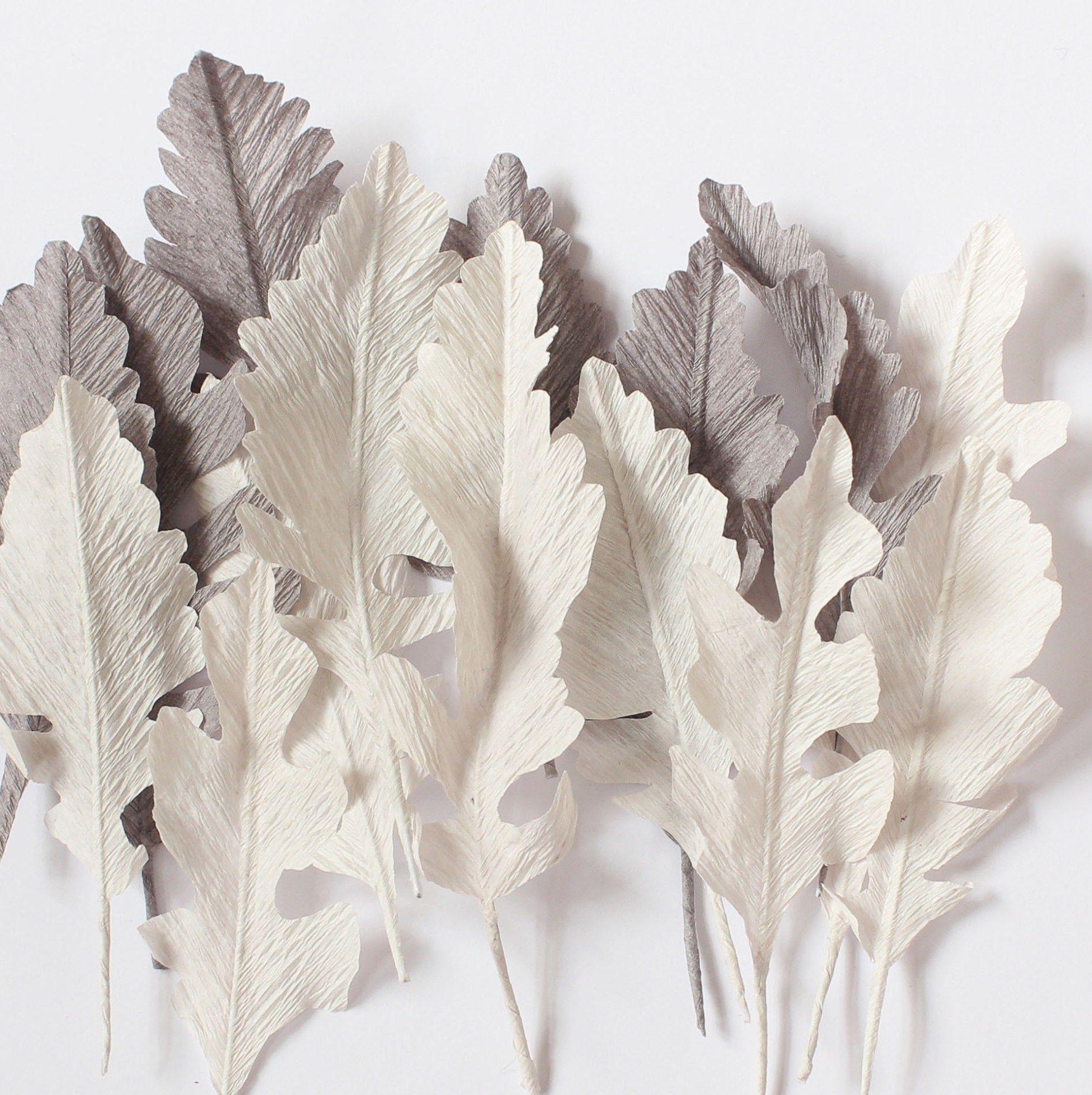Paper Dusty Miller By A Petal Unfolds Fleurs Pinterest Dusty