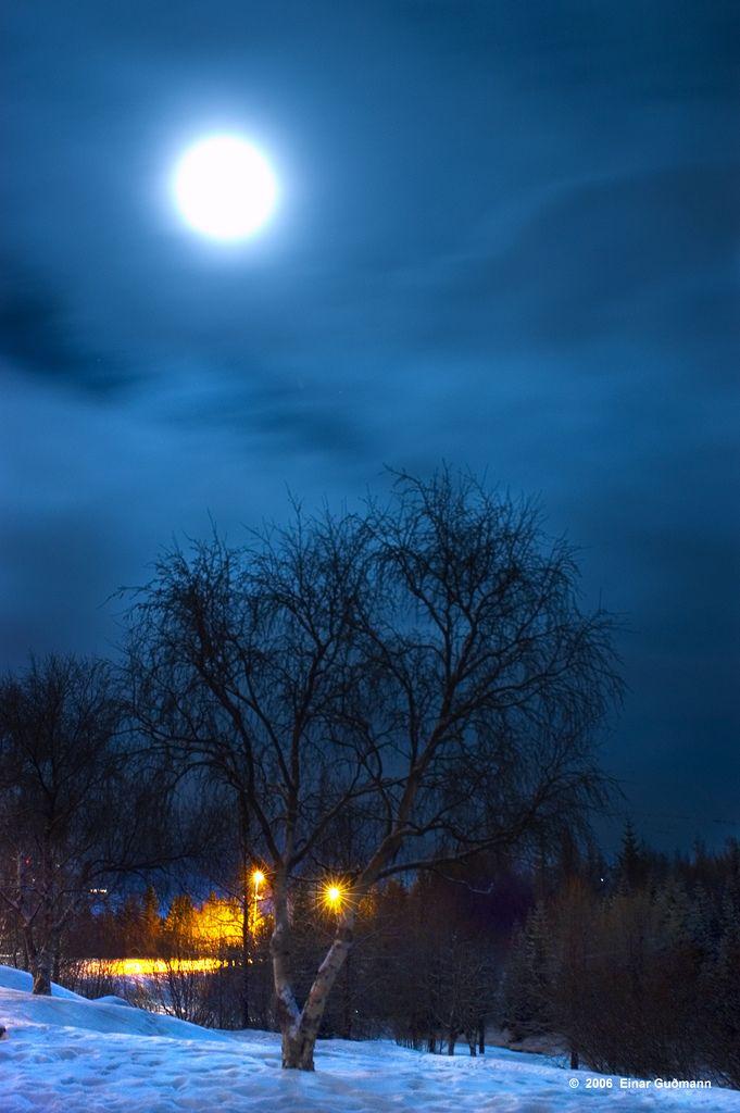 Winter Moonlight Boa Noite Com Lua Lua E Estrela E Luar
