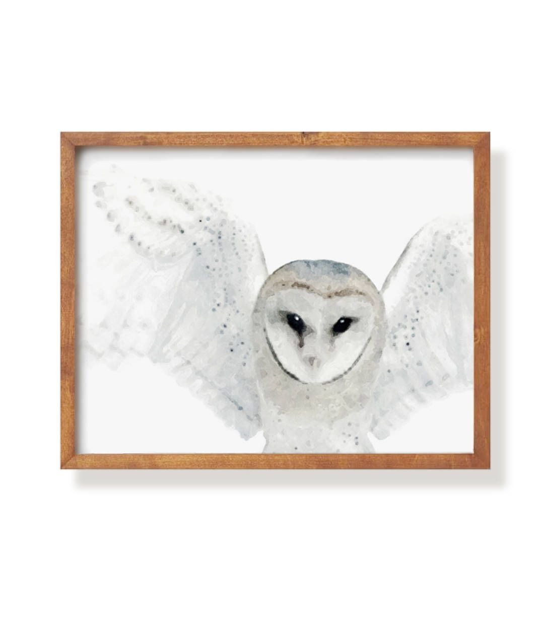 Watercolor bird art owl painting wall decor watercolor print