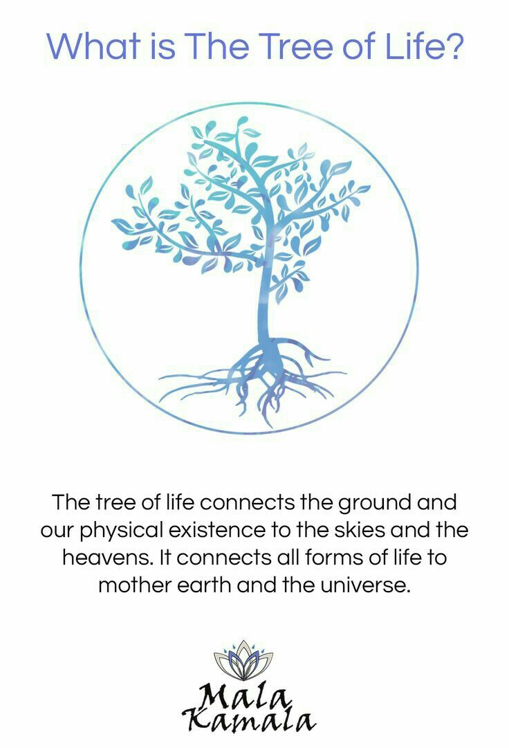 Pin By Jessica Walker On Healing Hippies Pinterest Yoga