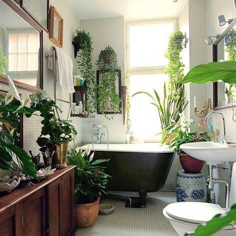 Bathroom Oasis Home Sweet Home Jungle Bathroom Bathroom Plants Tropical Bathroom