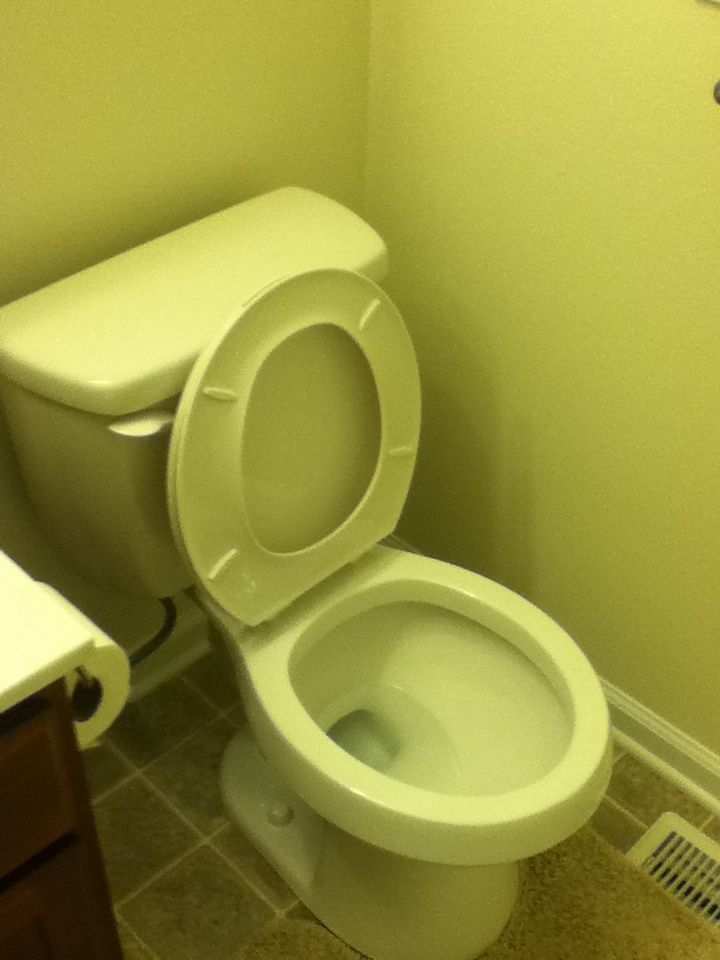 Every Single Time My Brothers Leave The Toilet Seat Up I Ll Pin