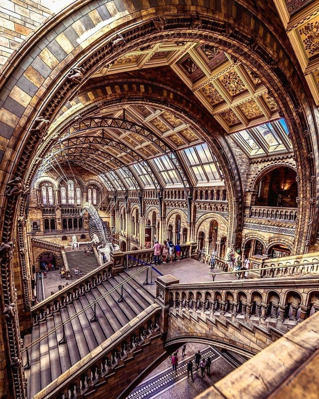 Known As A Cathedral To Nature London S Natural History Museum Is Home To More Than 80 Million S Natural History Museum London Nature London Natural History