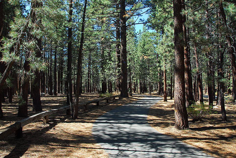 New shady rest bike trail mammoth lakes devils