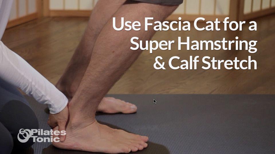 37+ How to stretch fascia trends