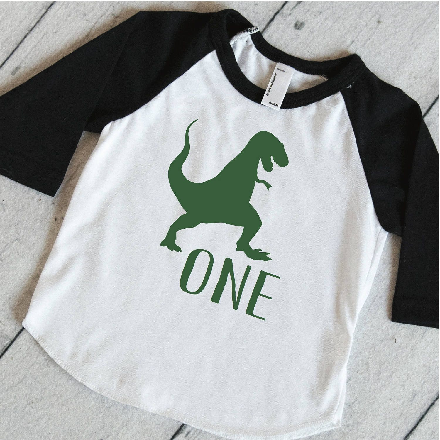 2d9f1ad2a Kids Birthday Outfit, Dinosaur Shirt, T-Rex Birthday Shirt, Dinosaur  Birthday Party Shirt, One Year Old Dino Shirt 316