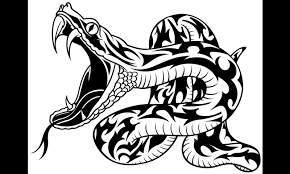 Rattlesnake head vector clipart | Free vector image in AI and EPS format,  Creative Commons license.