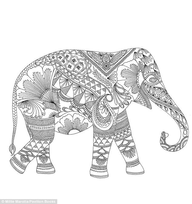 embellished elephant millie marottas colouring book features an array of intricate designs including this - Coloring Page Elephant Design