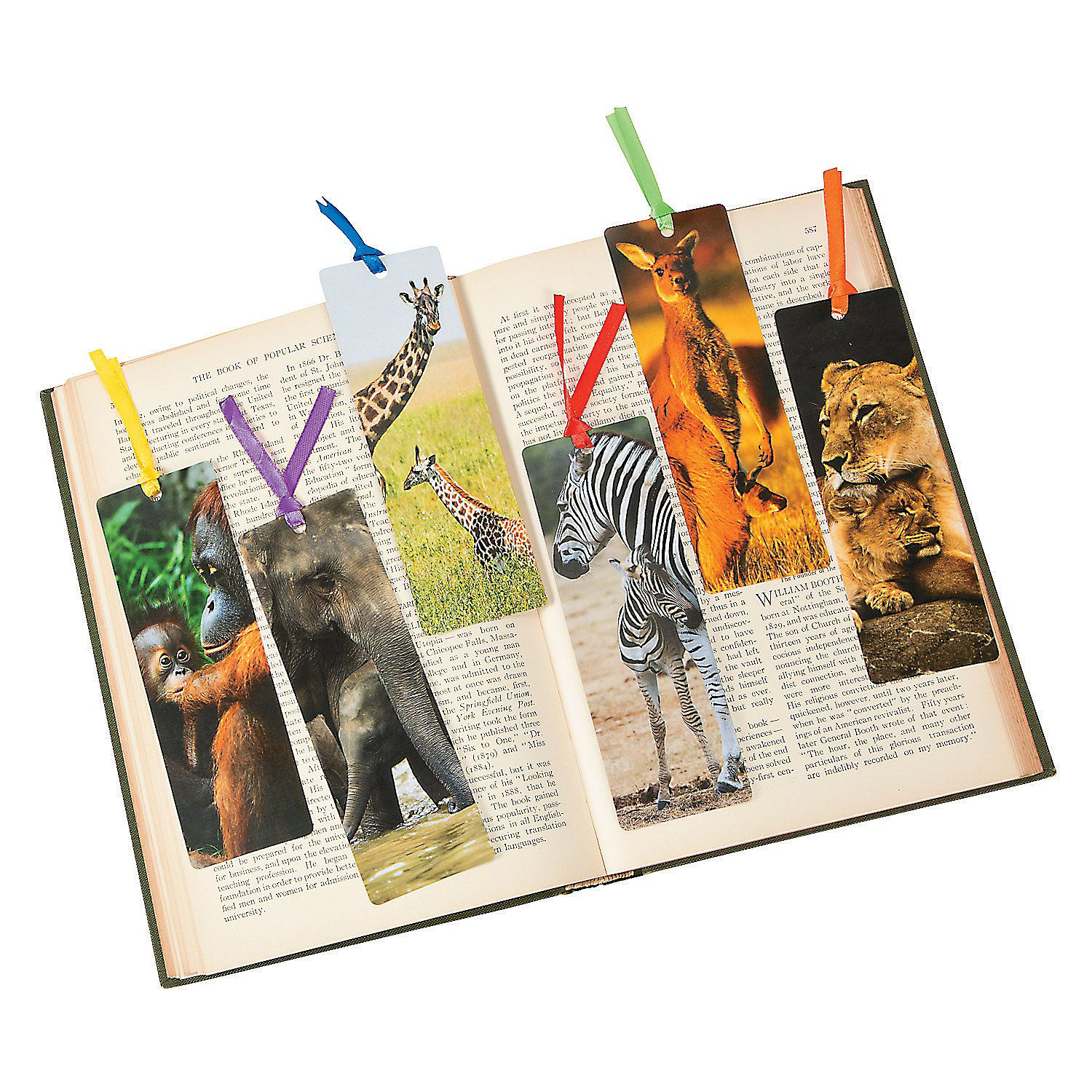 Mommy Amp Baby Animal Bookmarks Orientaltrading