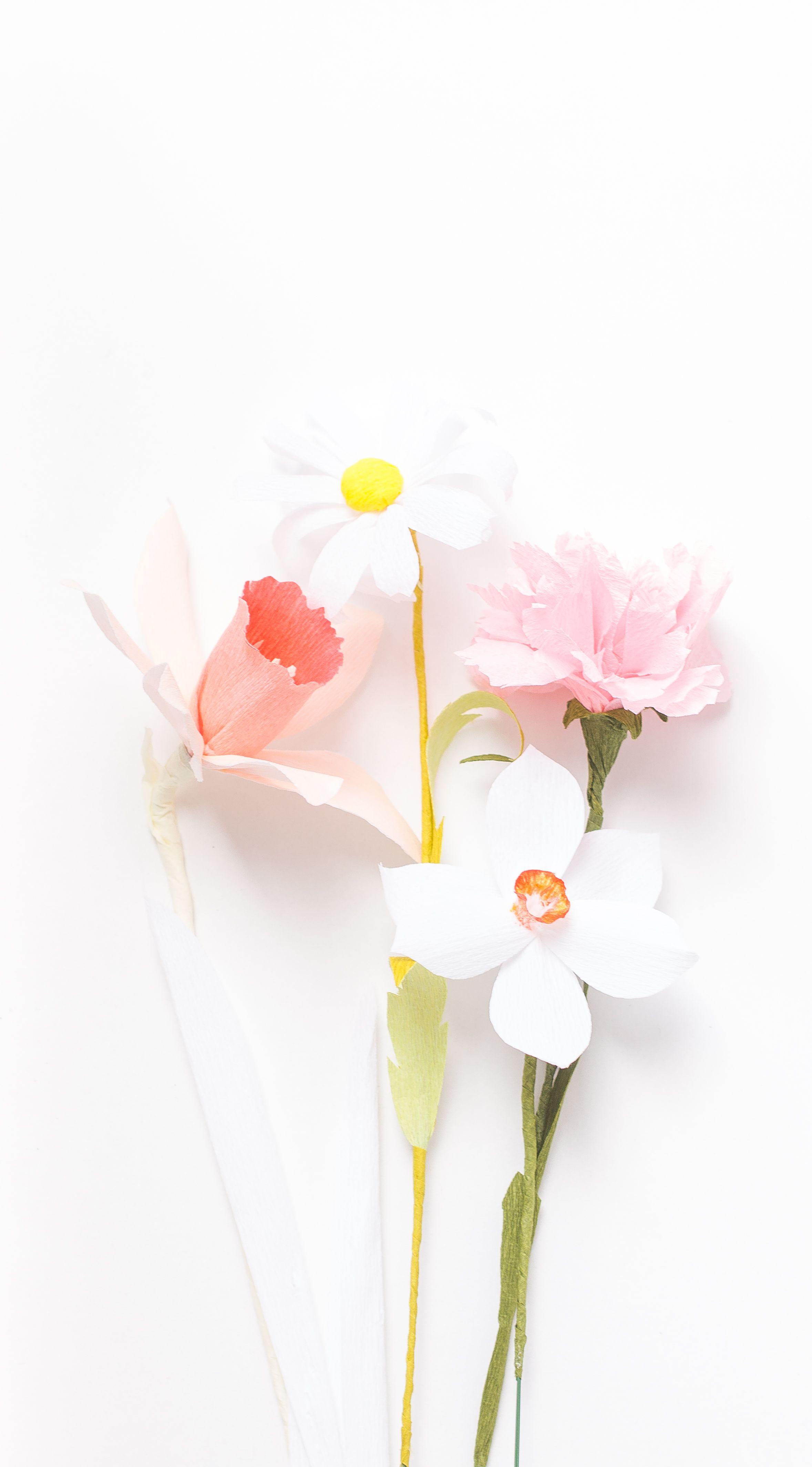 Paper flowers susan beech paperflower flowerart paper