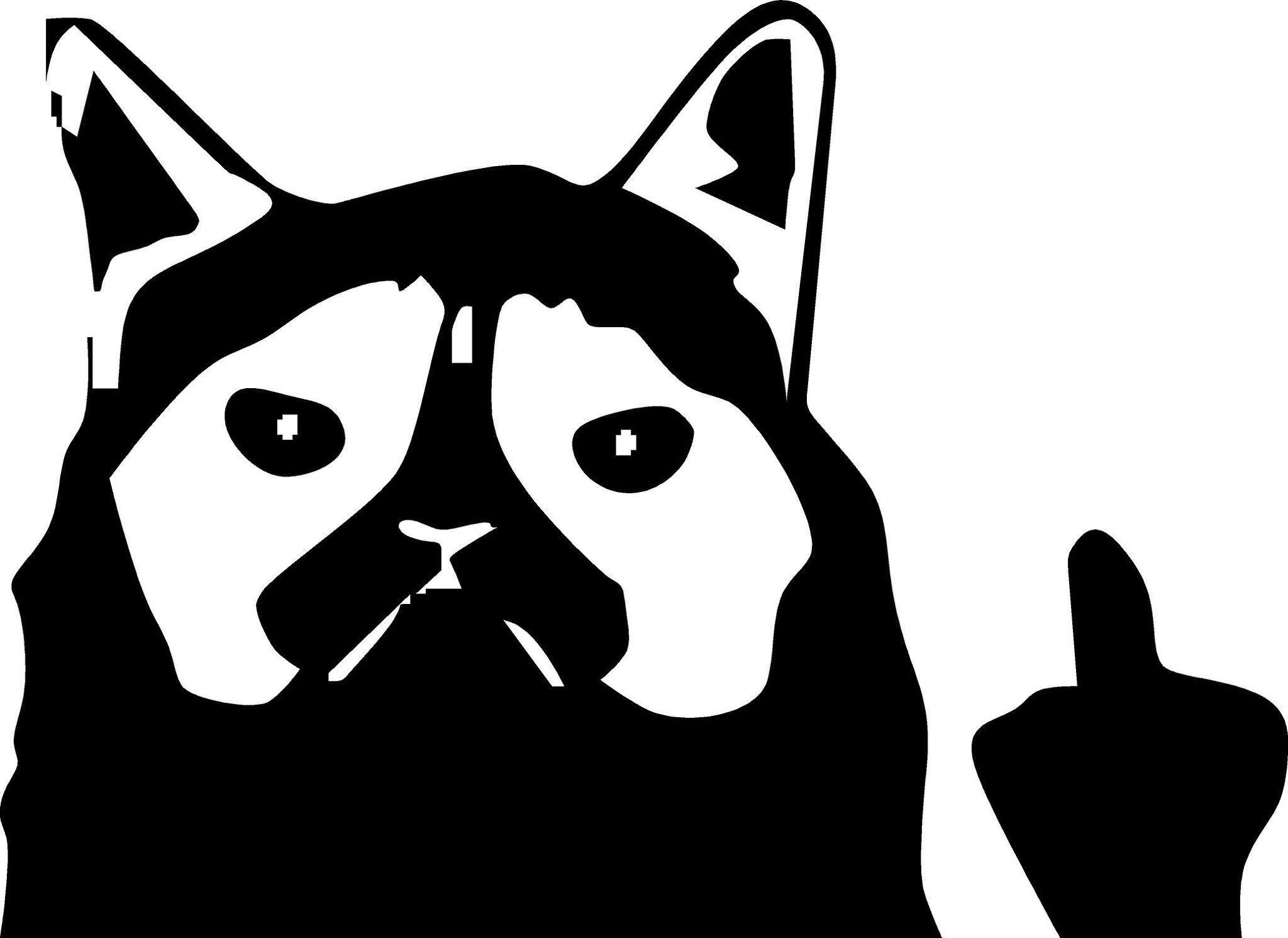 Grumpy Cat Middle Finger Vinyl Decal Grumpy Cat Pinterest - Vinyl decal cat pinterest