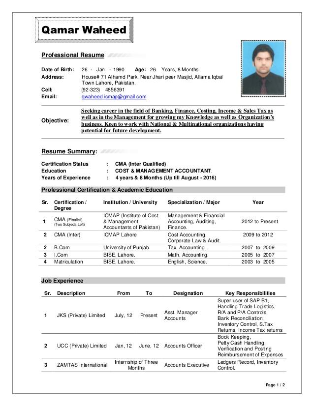 cv format bd Google Search Cv format, Professional