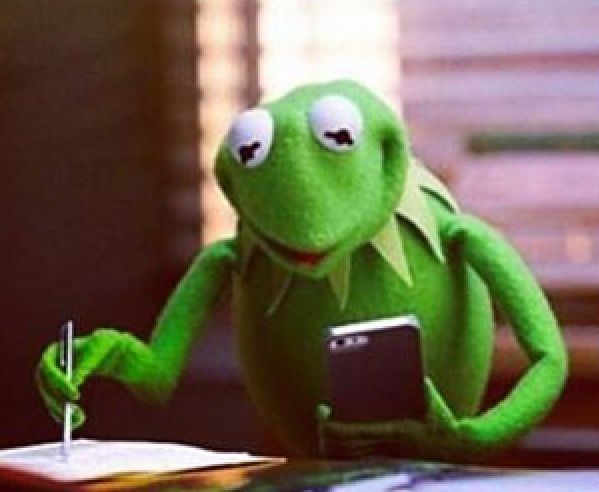 Kermit The Frog My Mood Board Pinterest Kermit And Memes - Real life kermit the frog discovered in costa rica